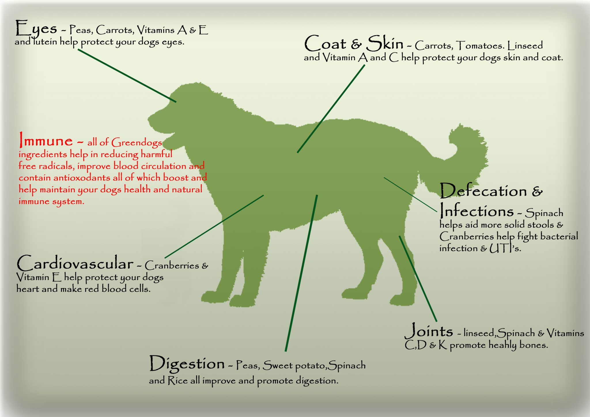 DOg Guide 2015