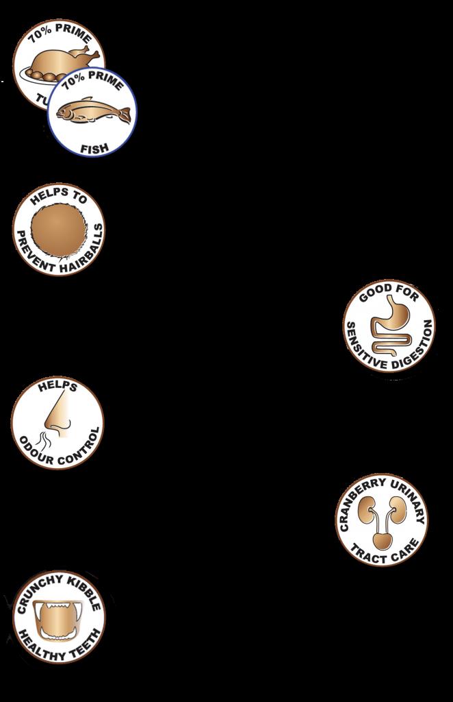 Symbols-sept-15